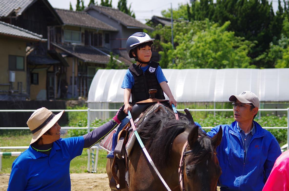horse_5.JPG